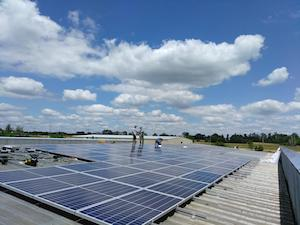 50 kW Rooftop Solar Installation - Pet Depot's Corporate Headquarters (Florence)